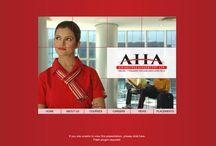Aviation Academies