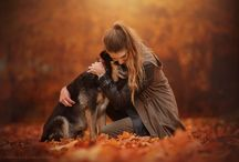 Dogs: Autumn