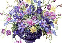 Fleur/ Bloemen /flowers