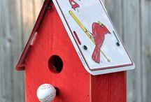 St. Louis Cardinal's