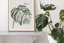 Planter som er fine