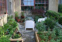 Gardening / by M. H.