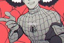 Everything PIDERMAN