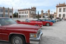 American Classic Car Owners Club Costa del Sol  / El American Classic Car Owners Club Costa del Sol en  el Museo Automovilístico de Málaga.