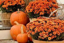 Fall holiday decorating