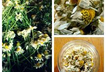 Aromantiche - recipe & DIY