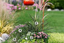Flowers & Plants Combinations