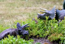 Dinosaur Play Garden