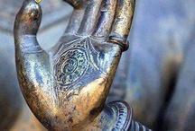 Buda y Conciencia