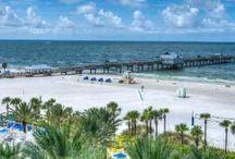 Florida | Restaurants & Bars