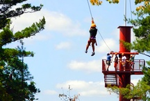 Outdoor Attractions / When the weather warms up, we head outside for zip lining, go-karts, outdoor mini golf and just enjoying Wisconsin summer. What will your family want to do? / by Wilderness Resort