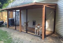 kennel attached to house