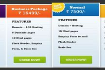 Website Development Plans / Check wow net technologies Website development and designing and hosting plans, lowest plan in nagpur with basic seo services