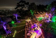 Party Lighting / Party Lighting in backyard or outdoor events.