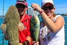 Australian Fishing Tours / Australian Fishing Tours
