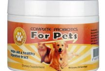 Healthy Pet Products / Pet health