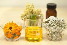 Porque la ciencia relaciona el consumo del aceite de canola con el Alzheimer