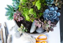 Kelley and Cricket DIY / DIY crafts for your home!