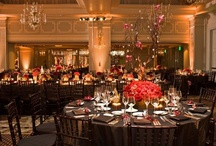 Venues / We identify and share our top pick of venues in the Southern California area for weddings.