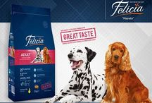 Köpek maması / Köpek maması ve köpek beslenmesi ile ilgili tüm görseller