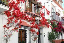 Malaga ❤