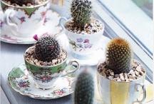 Teacup crafts / by Alexandra Aguilar