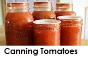 Canning and Pickling / by carol robinson