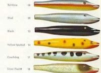 Color chart lures