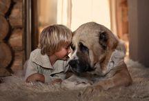 Hond en kind / Honden en kinderen