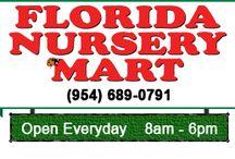 Florida Nurseries
