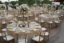 wedding / My plan