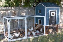 farm livin / by Katie Spain