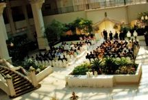 FianTrey! / Edmondson wedding planning!  / by Tia Patron
