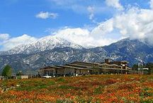 YUCAIPA Retreat / All about Yucaipa - the Pressure-Free Space to Appreciate the Beauty of Nature, People and Ideas. Welcome and book your next relaxing weekend just being. Welcome Vadim Ovchinnikov.   More on https://yucaipablog.wordpress.com