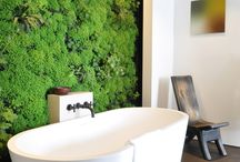 Green Themed Rooms / by Lutron Electronics