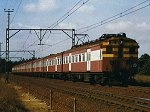 OLD SOUTH AFRICAN TRAINS