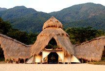 Exotic Safari Camps / Safari camps that are extraordinary