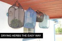 Herbs & Spice