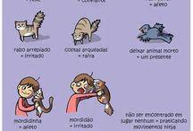 cat linguagem