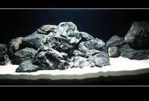 Akwarium/Aquarium