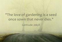 Gardening Design Inspirations