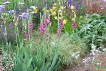 Gorgeous Gardens / by Sarah Foster : Iris May Designs