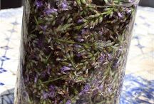 how to extract essential oils from herbs