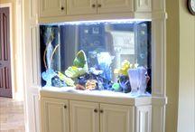 Built-in Aquariums