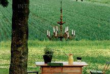 Outdoor Spaces/Gardening / by Amanda Inman
