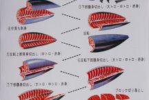 suhsi/ salmão sashimi