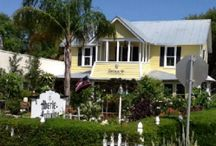 Canal Street / Enjoy shopping and dining on Canal Street in New Smyrna Beach.