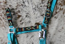 Halter crazy / Patterned are my kind of halters. Halters that I like and some I don't, there just halters people!