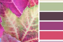 Colour Inspiration / Colors for home decorating