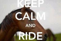 # Horses ( Micha's posts)